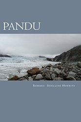 Pandu - A young adult island adventure